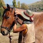 Escursione a cavallo (2)